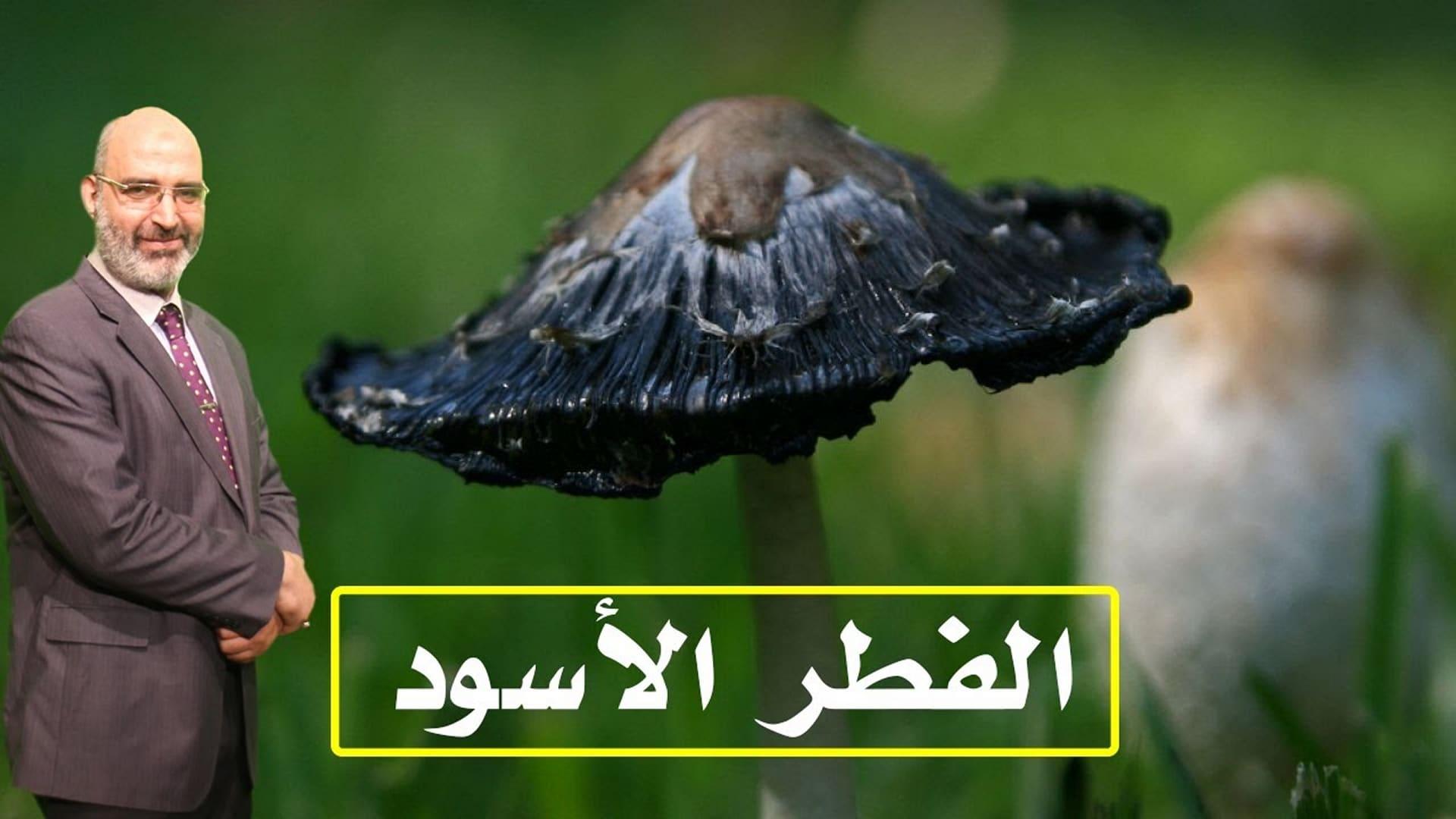 مرض الفطر الأسود - الدكتور امير صالح